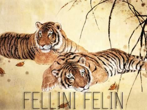 ob_b2b022_fellini-felin-copie