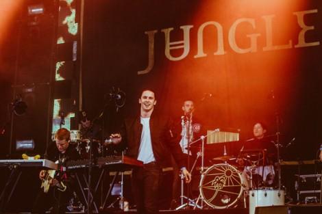 Jungle Wemusicmusic