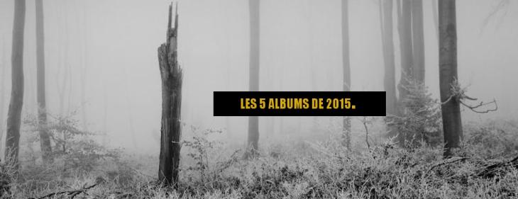 bannière albums 2015